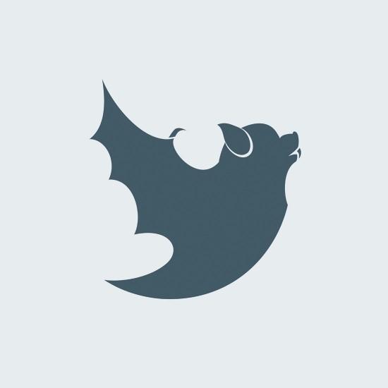Twitter Bat